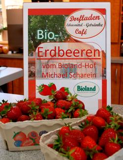 Bioland-Erdbeeren aus Otersen_250